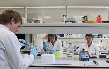 Gene therapy that could cure Motor Neurone Disease moves ...