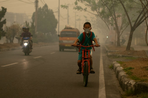 One million premature deaths linked to ozone air pollution
