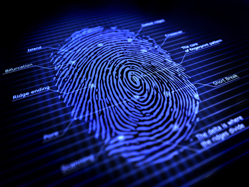 Fbi Forensics Hits Hollywood Speed Researcher Says