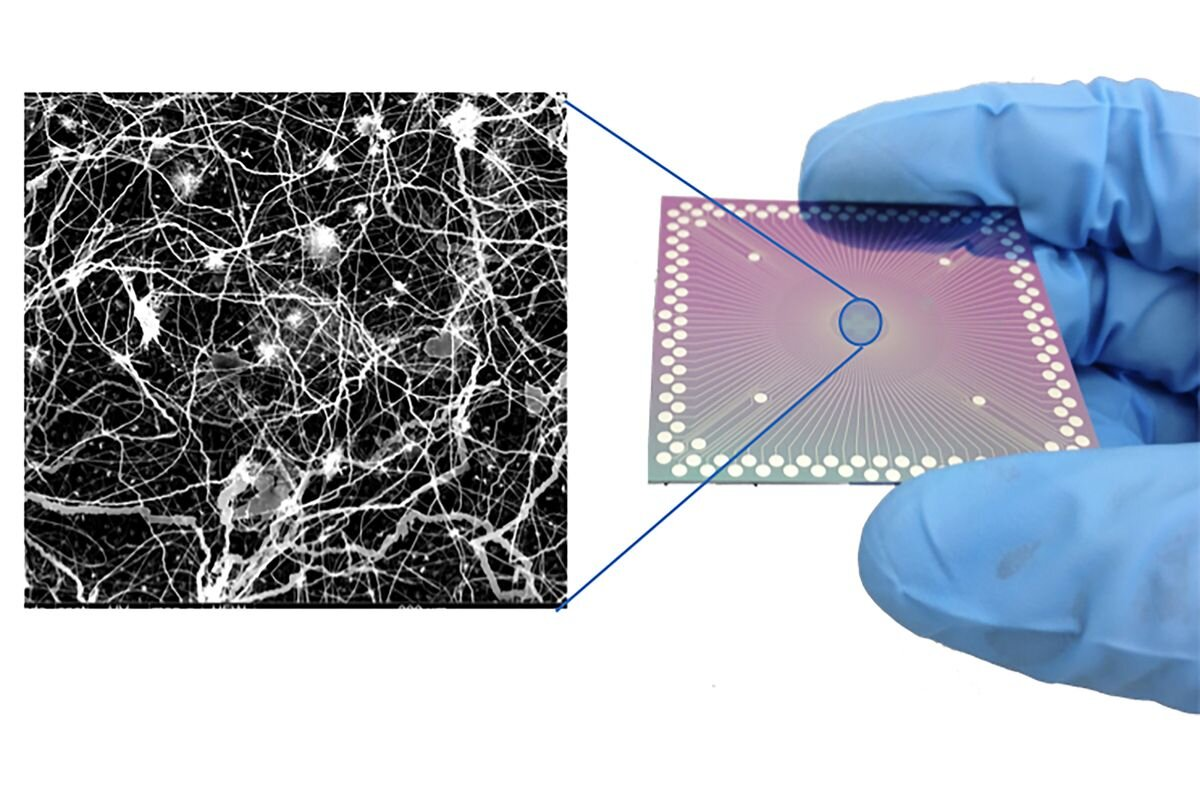 Researchers observe brain-like behavior in nanoscale device