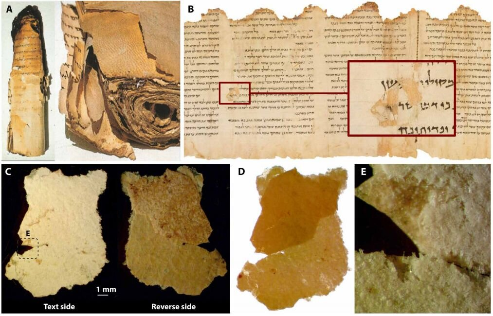 Study of Dead Sea Scroll sheds light on a lost ancient