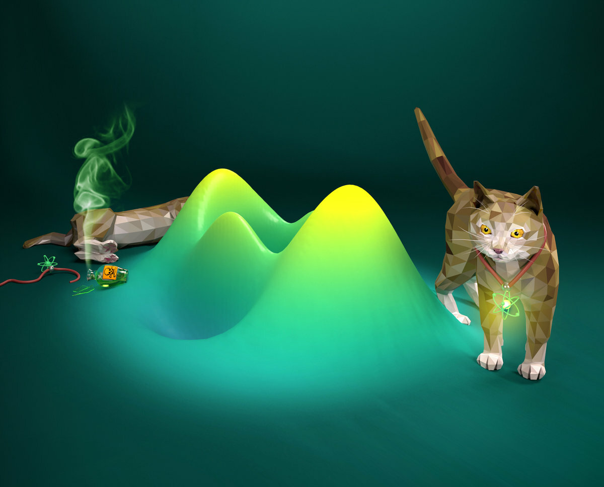 An entangled atom-light state realizes a paradoxical thought experiment by Erwin Schrödinger