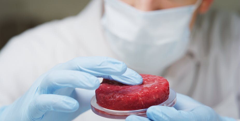 Cultured' meat could create more problems than it solves