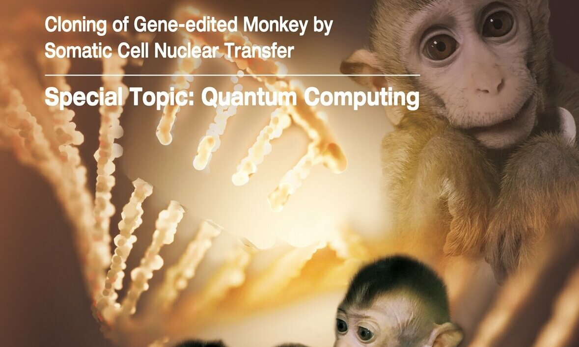 Gene-edited disease monkeys cloned in China