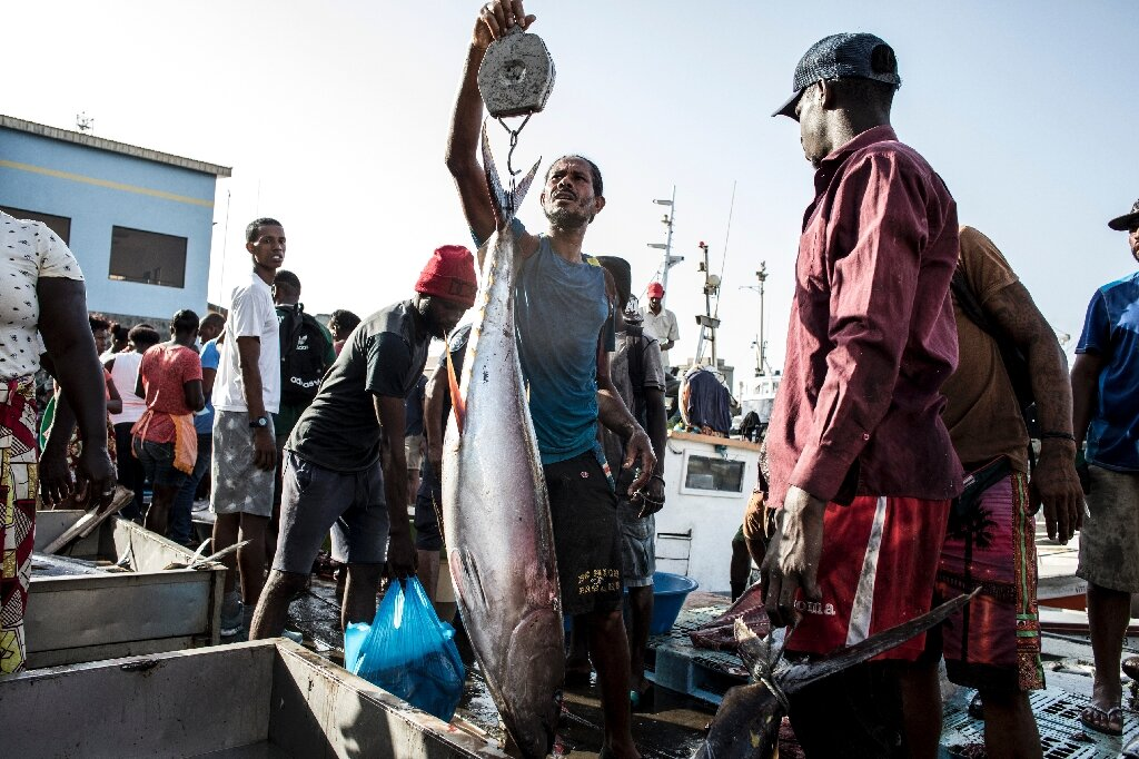 Fate of bigeye tuna in the balance in quota meet