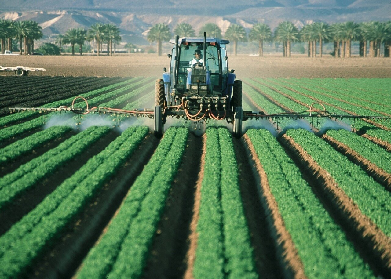 Common pesticide may contribute to global obesity crisis