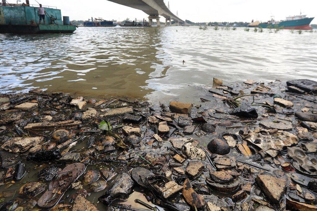 Oil spill threatens rare Bangladesh dolphin breeding zone