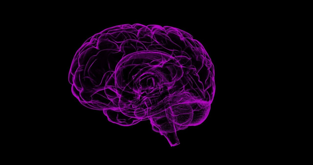 MicroRNA may serve as therapeutic targets for traumatic brain injury thumbnail