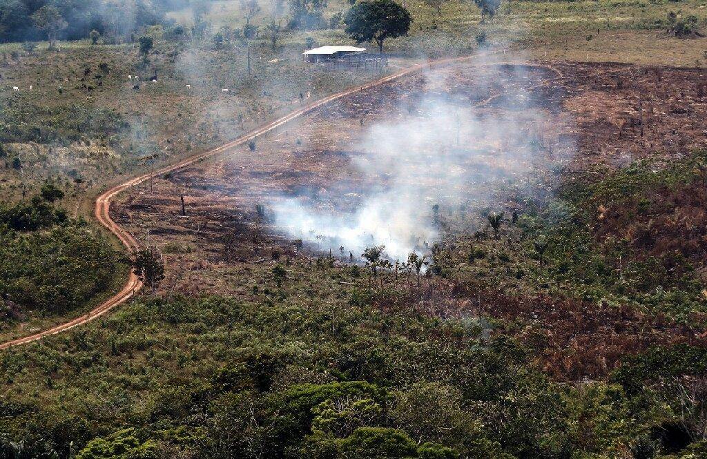 Colômbia São Paulo fonte: scx2.b-cdn.net
