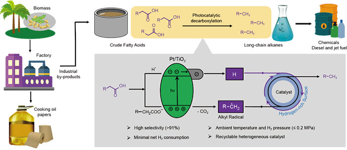 Scientists use light to convert fatty acids into alkanes