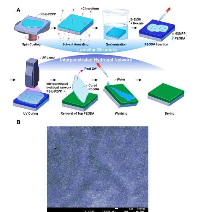 3-D touchless interactive display detects finger humidity to change color