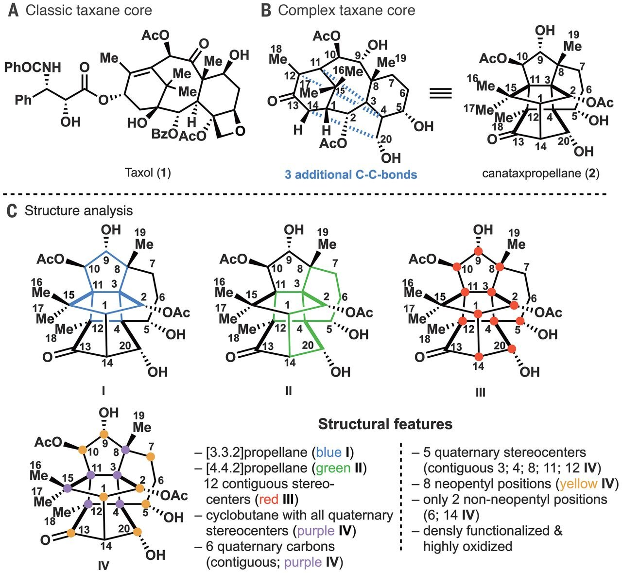 Synthetic canataxpropellane at last: Reproducing one of nature's most complex products