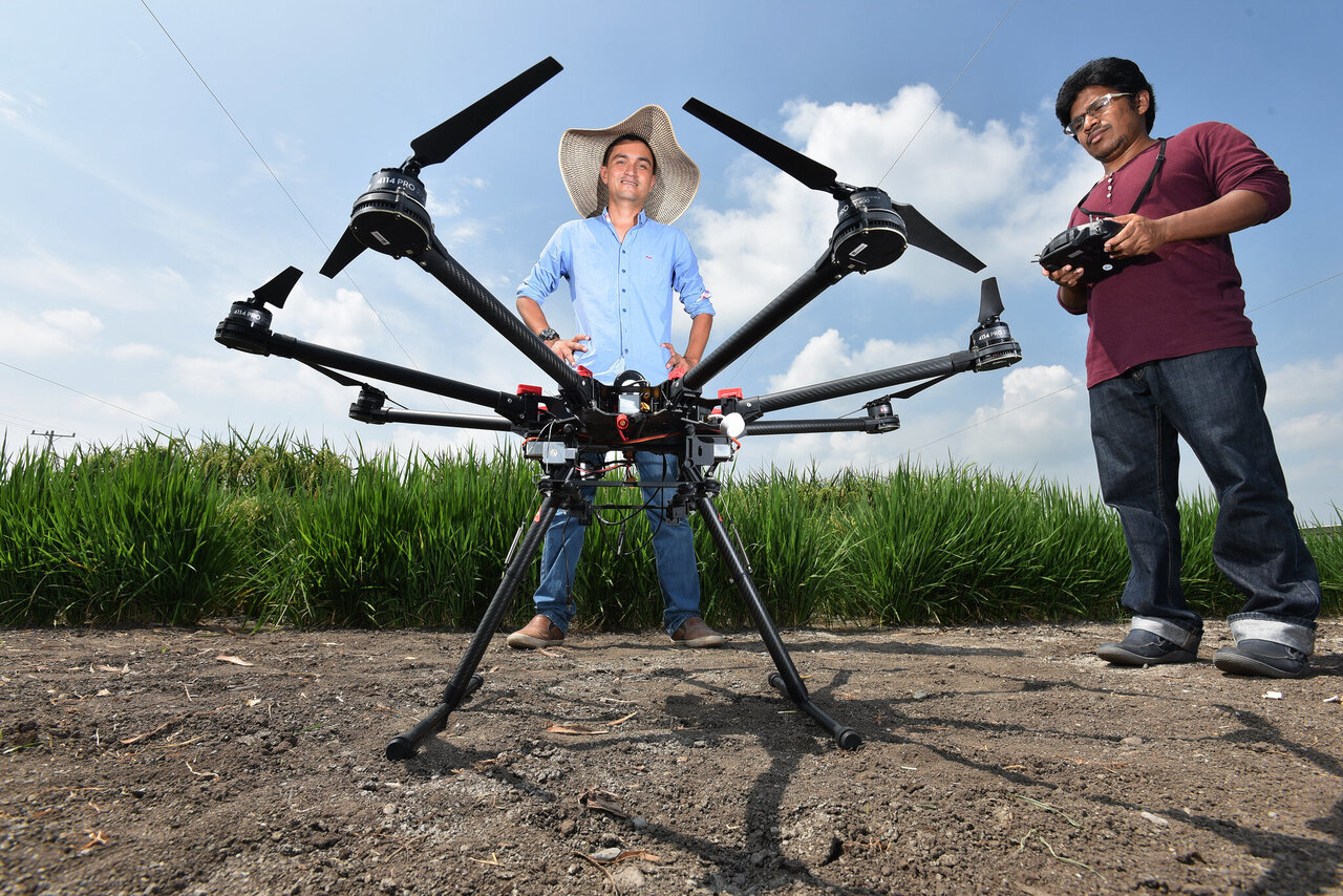 AI goes underground: root crop growth predicted with drone imagery thumbnail