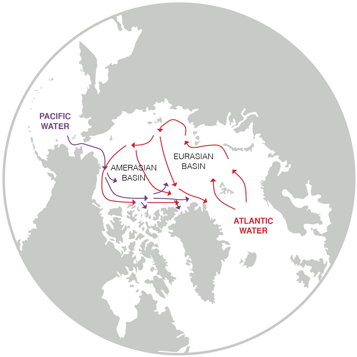 Arctic Ocean changes driven by sub-Arctic seas - Phys.org