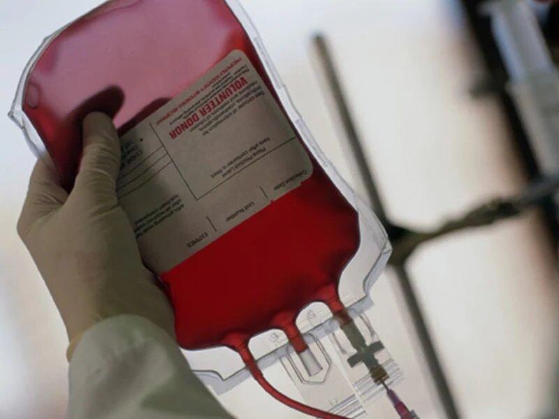 human papillomavirus blood donation