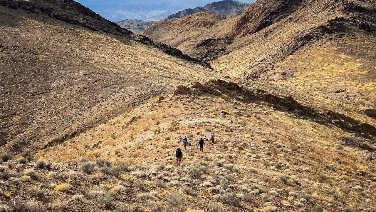 Image result for mojave desert earth