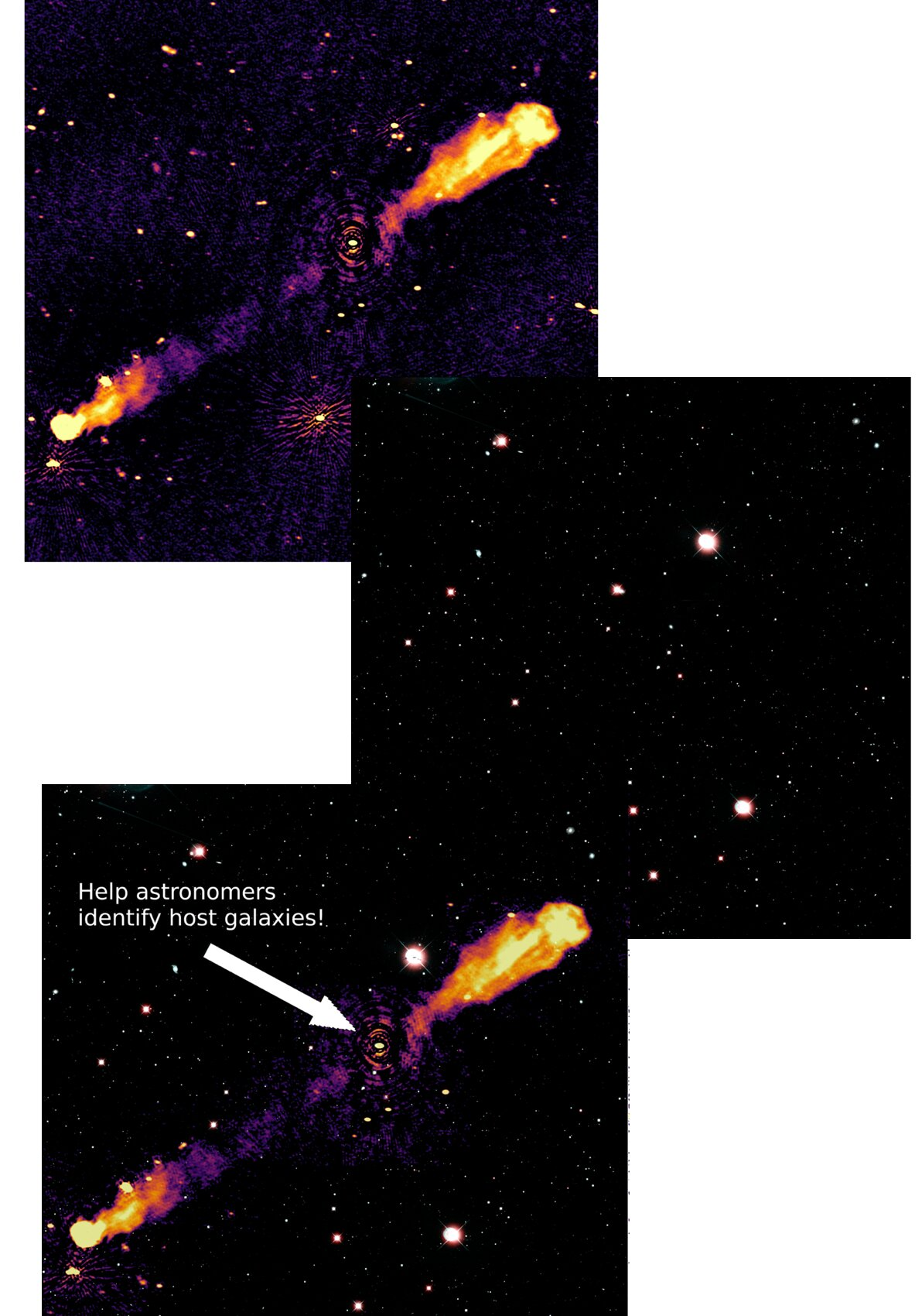 Help find the location of newly discovered black holes in the LOFAR Radio Galaxy Zoo project