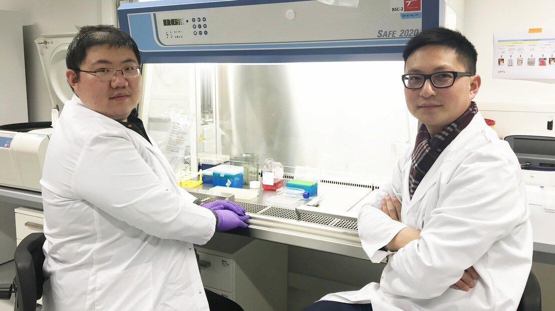 Personalized cancer vaccines: Delivery breakthrough may provide better results