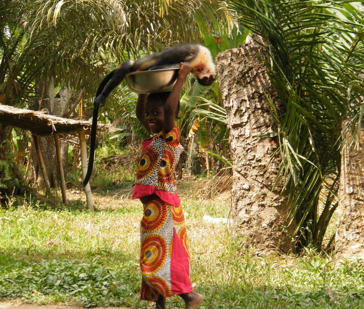 Reduction of bushmeat hunting