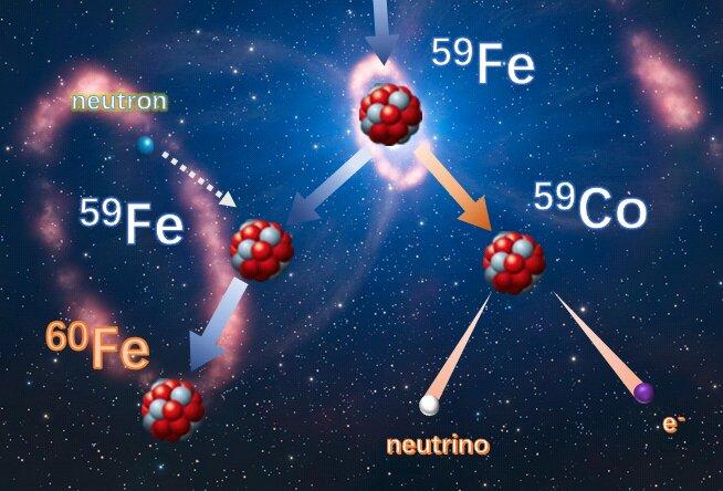 A study sheds light on the stellar origin of iron nuclide
