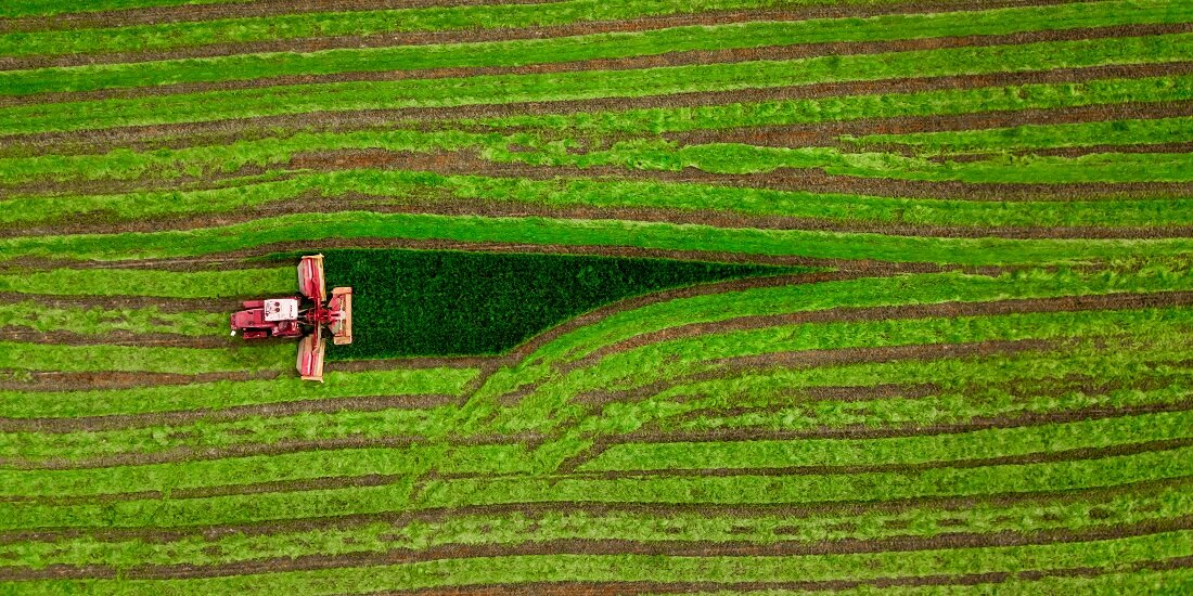 Abandoned cropland should produce biofuels