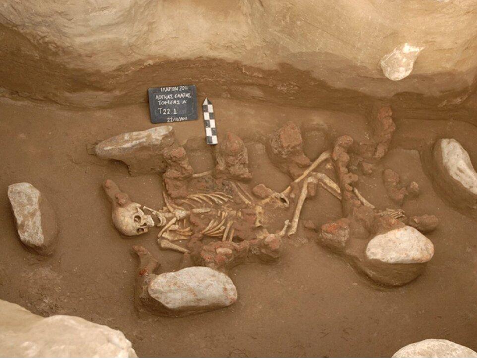 Ancient DNA reveals origin of first Bronze Age civilizations in Europe