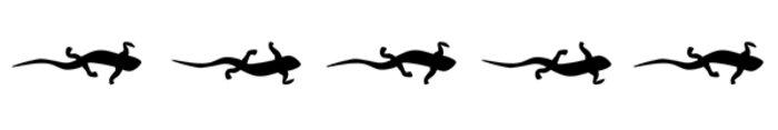 Decoding how salamanders walk
