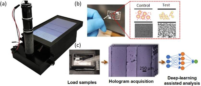 Deep learning and holography create a better point-of-care sensor