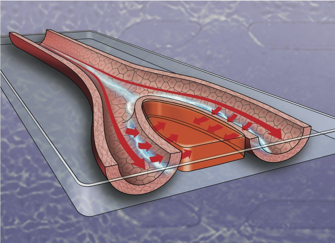 Electricity could help speed wound healing, new study shows