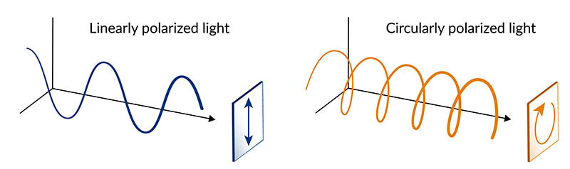 Experiments confirm a quantum material's unique response to circularly polarized laser light