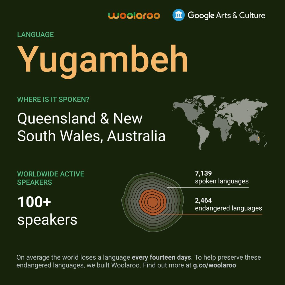 Google introduces Woolaroo, a tool for learning indigenous languages