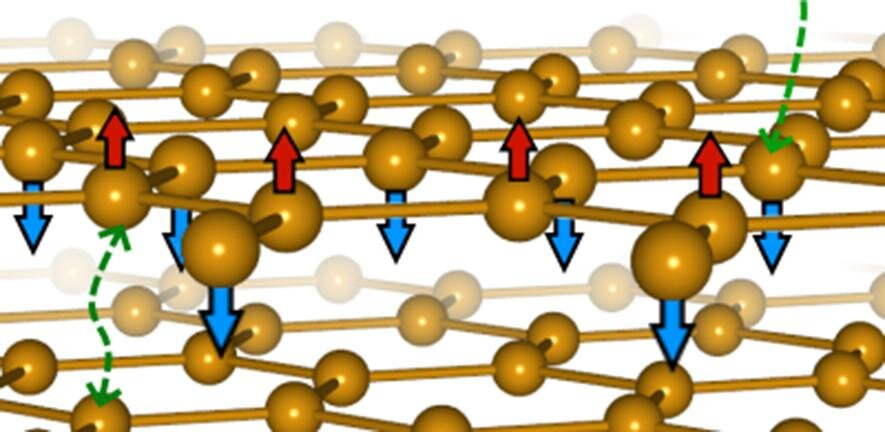 'Magnetic graphene' forms a new kind of magnetism - Phys.org