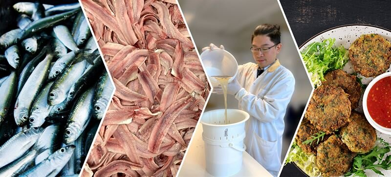photo of New dipping solution turns the whole fish into valuable food image