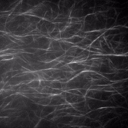 New study sheds light on molecular motion