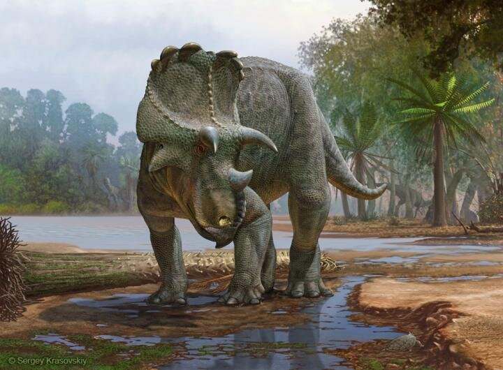 Newly described horned dinosaur from New Mexico was the earliest of its kind