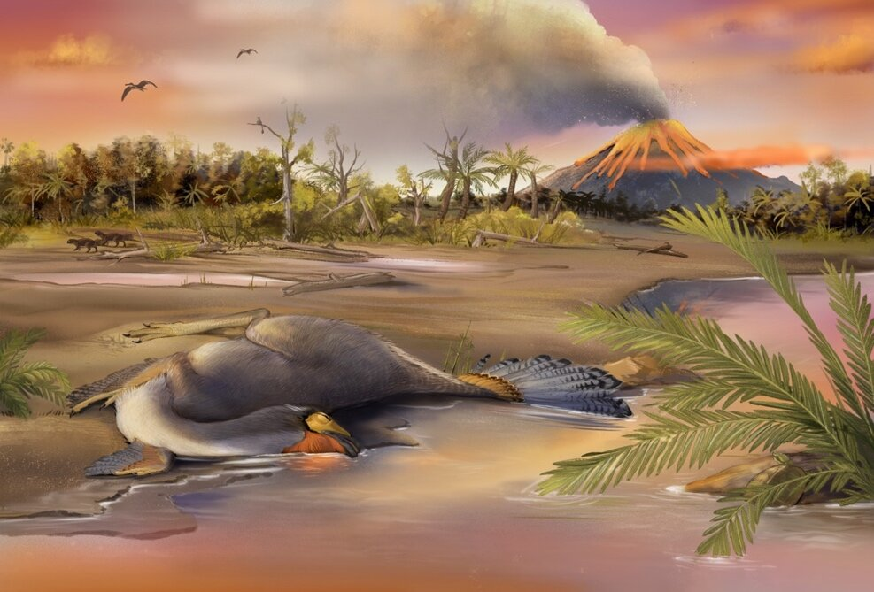 Organic molecule remnants found in nuclei of ancient dinosaur cells