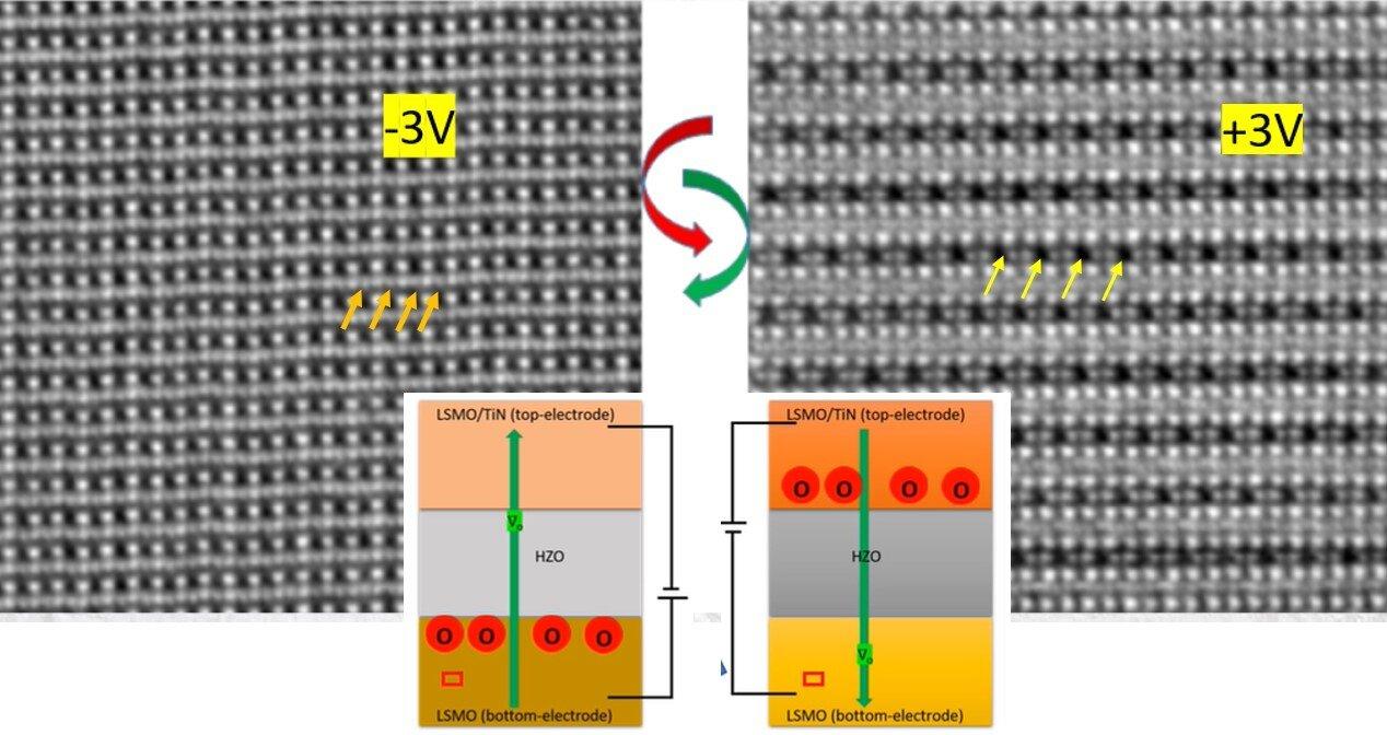 Oxygen migration enables ferroelectricity at the nanoscale