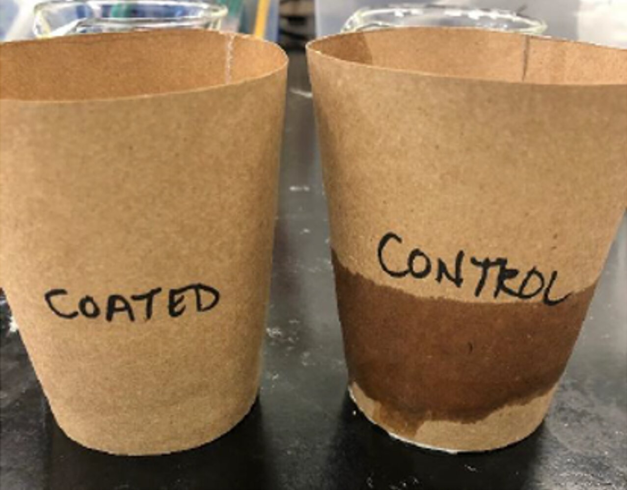 Paper without the microplastics: An economical and ecofriendly coating