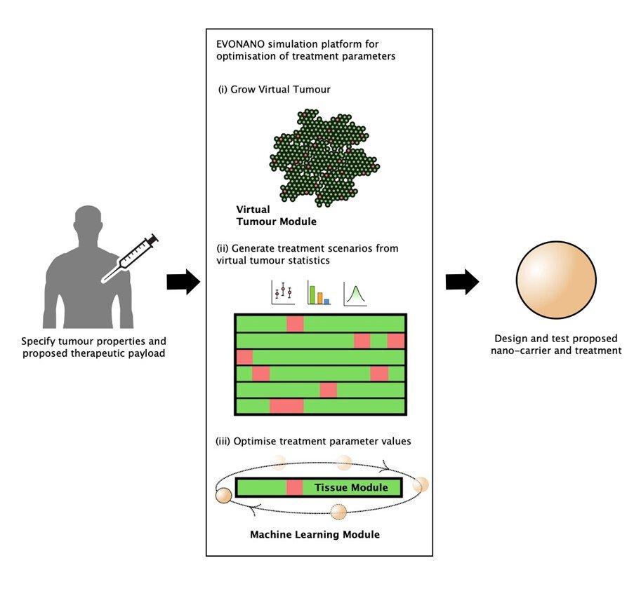 Growing and treating virtual tumors using AI-designed nanoparticles