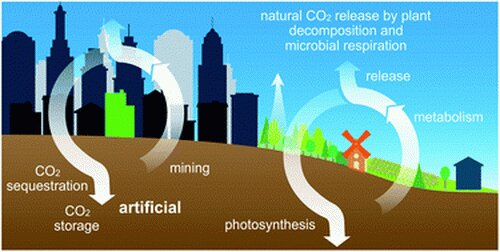 Transforming atmospheric carbon into industrially useful materials