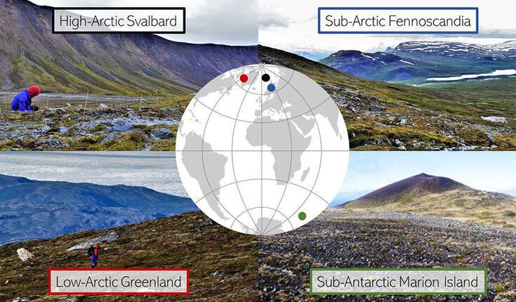 Tundra vegetation shows similar patterns along microclimates from Arctic to sub-Antarctic