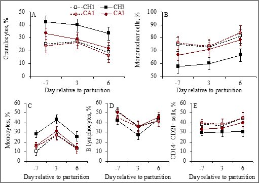 photo of Vitamin D supplement may enhance dairy cows' immune health image