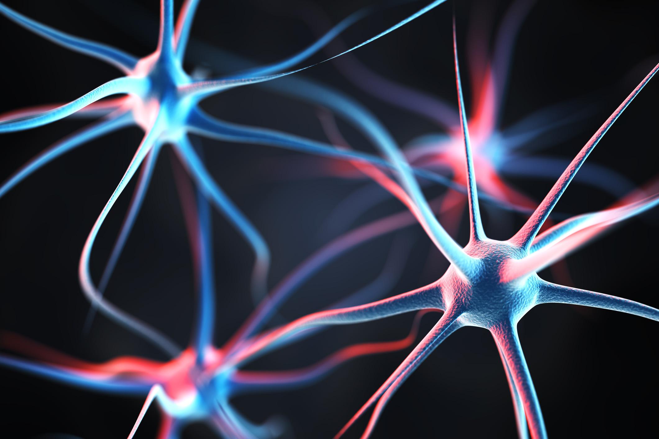 Schizophrenic Brain -Schizophrenia Neurological Impact