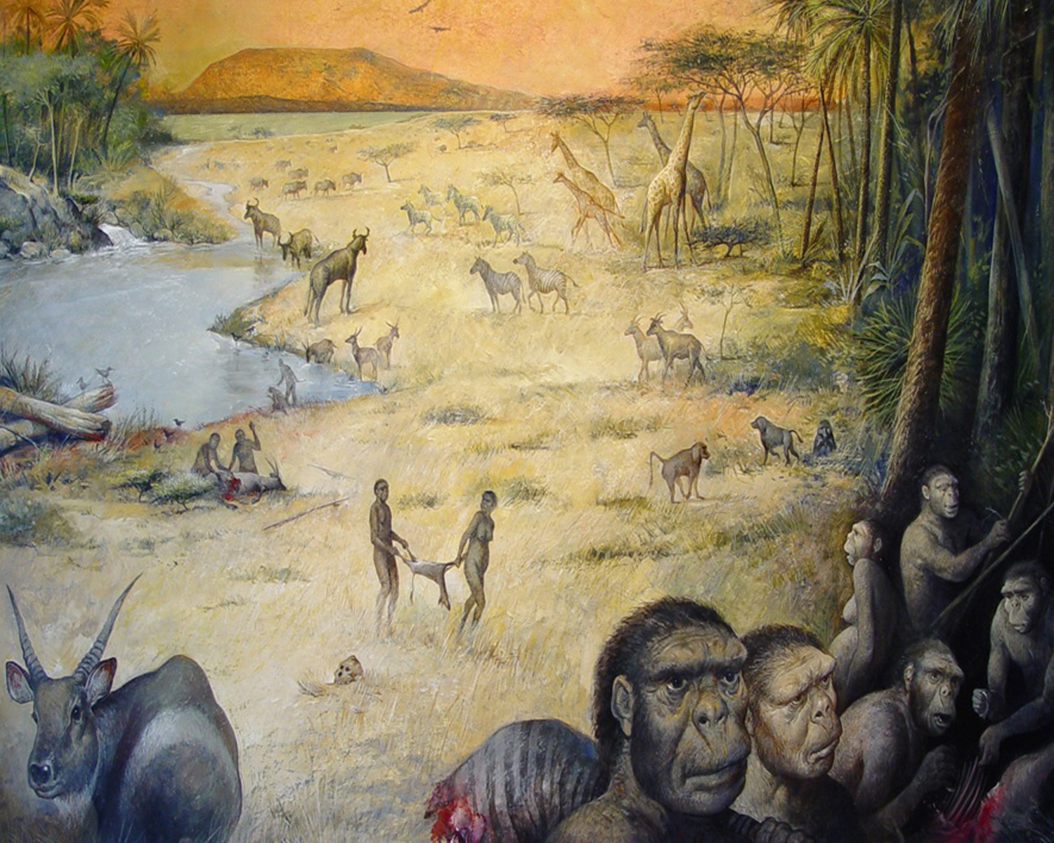 the location of the first humans on earth