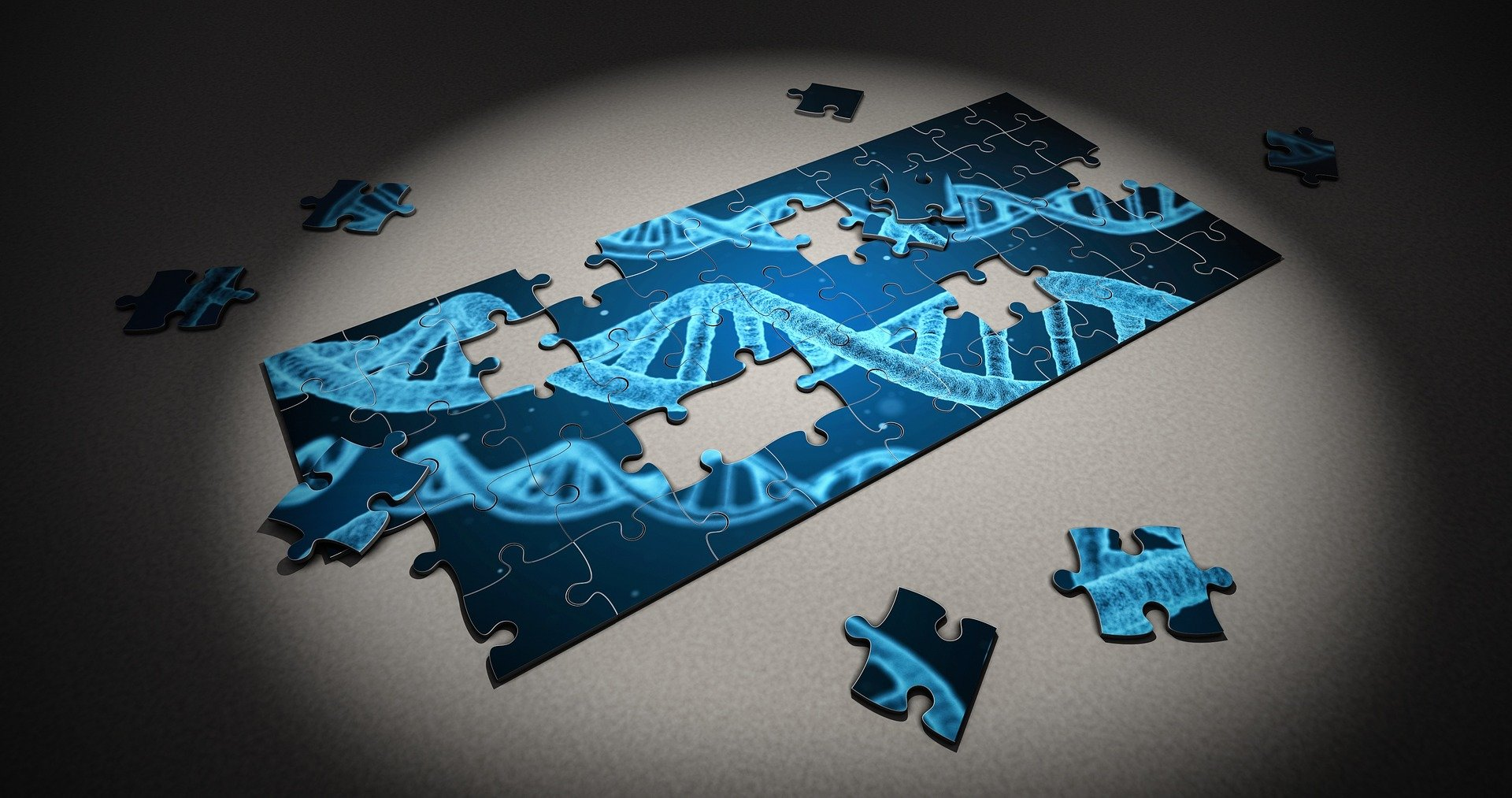 Researchers find more genes associated with intelligence and
