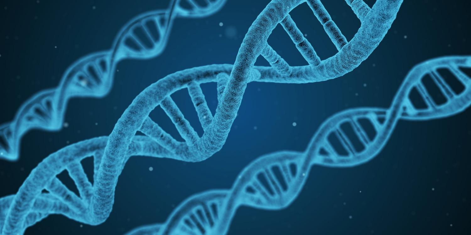 Scientists link pancreatic cancer survival to four genes