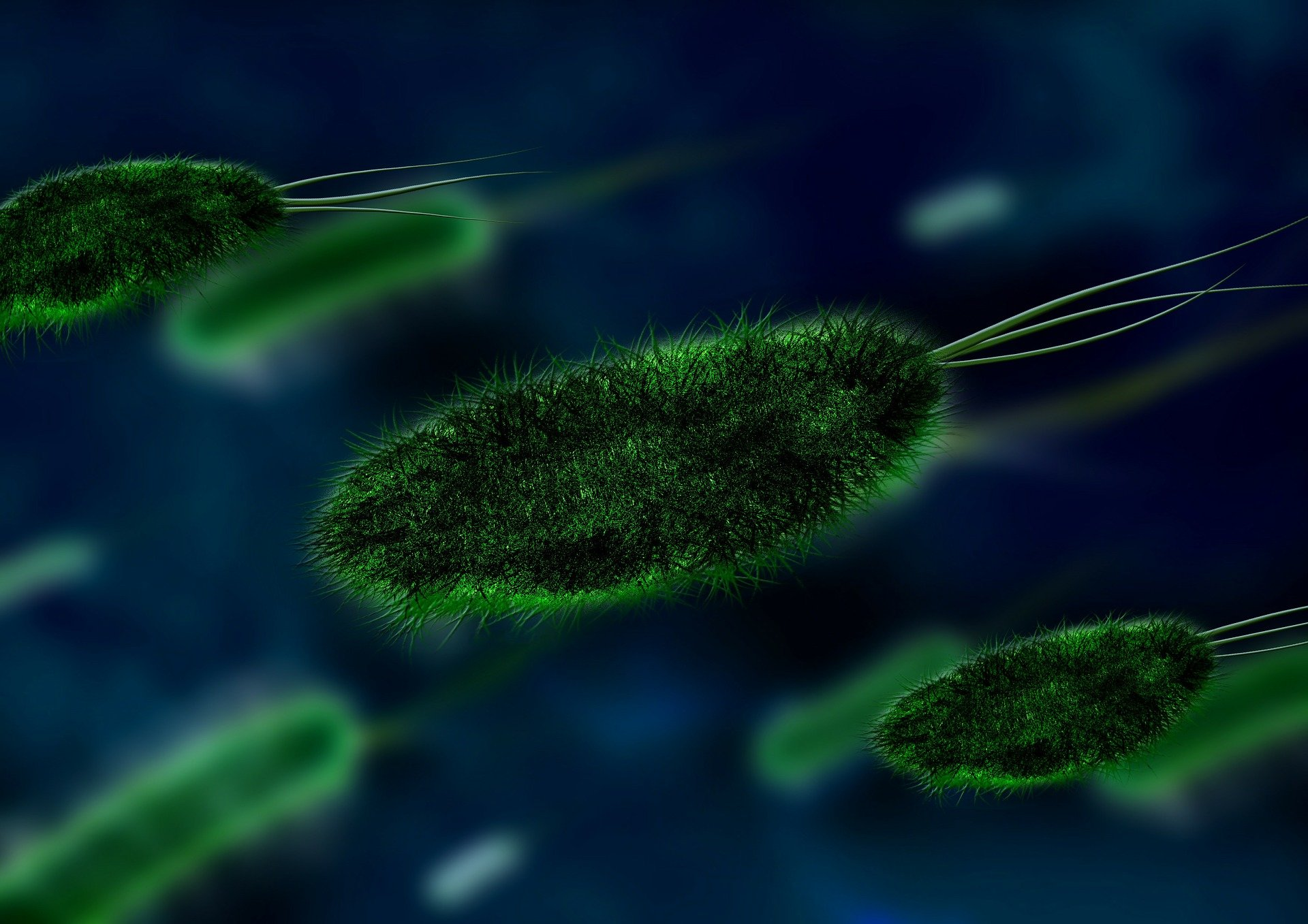 Scientists invent an artificial nose for continuous bacterial monitoring