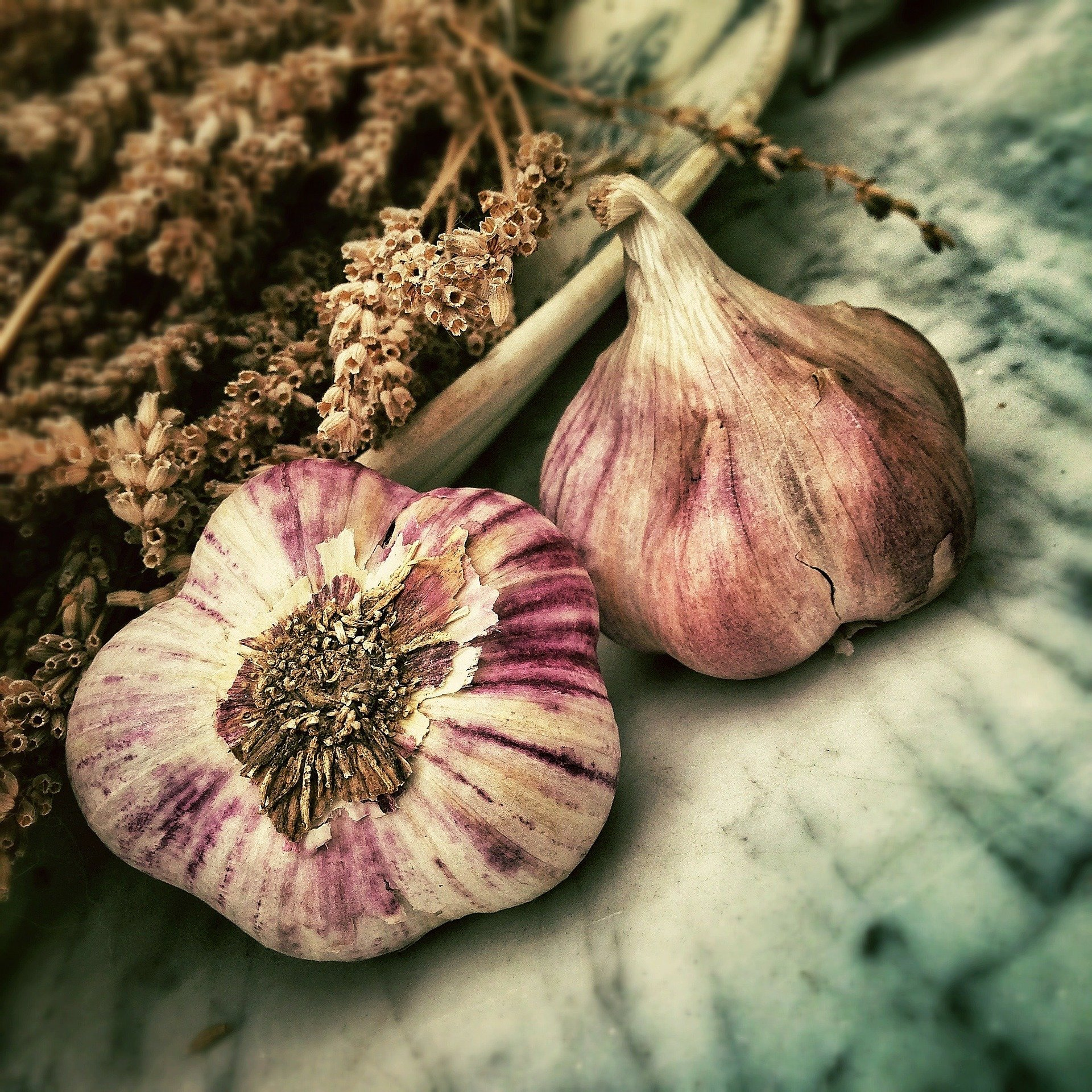 benefits of garlic extend to alzheimer's