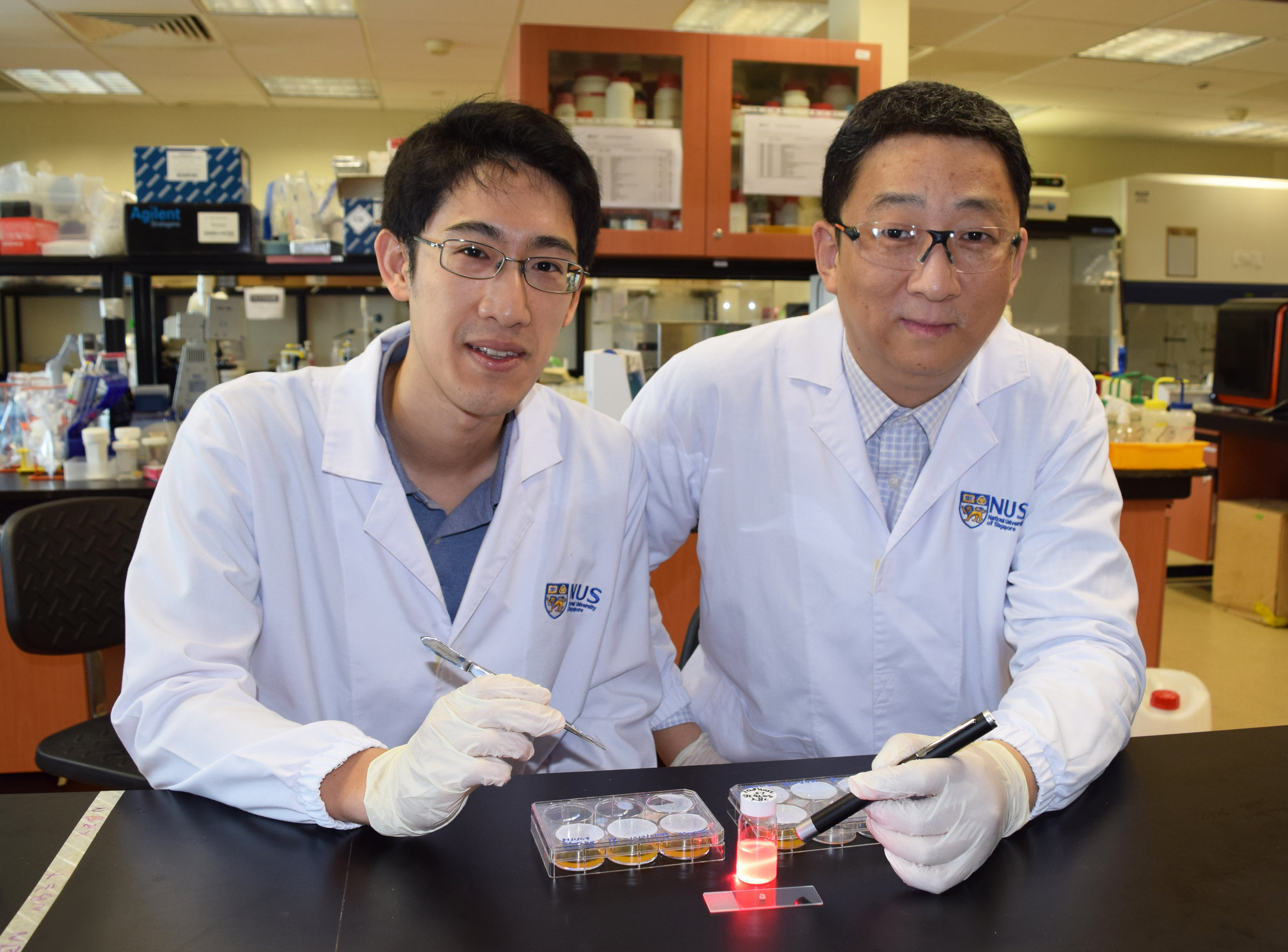 Researchers develop wireless light switch for targeted ...