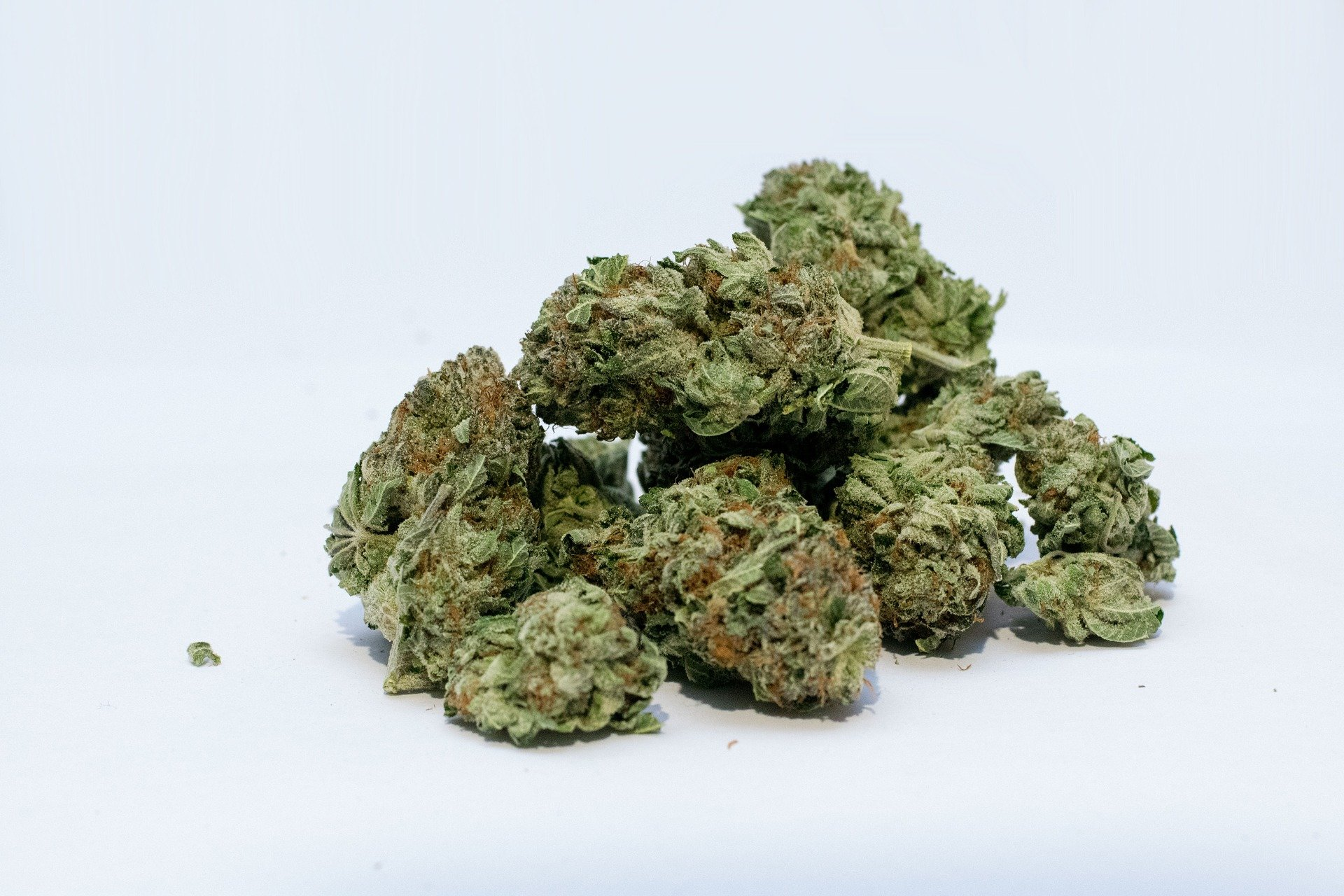photo of Cannabis labels often wrong and misleading image